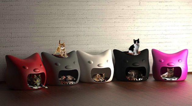 Kitty Meow Cat Head Shaped Pet Bed: Cat Beds, Cats, Idea, Animals, Meow Cat, Pets, Cat Houses, Cat Stuff, Kitty Meow