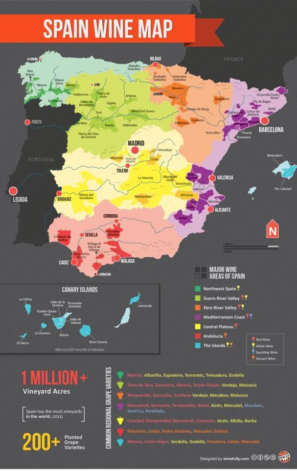 Spain wine map #infographic