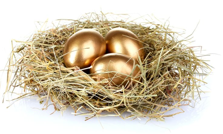 Debt Rescue | Growing your Nest Egg. Planning for retirement early in life can set you up for a comfortable retirement.