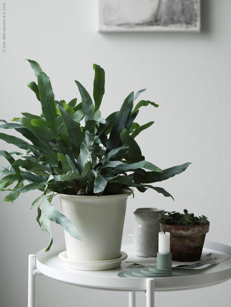 247 besten ikea ideen bilder auf pinterest. Black Bedroom Furniture Sets. Home Design Ideas