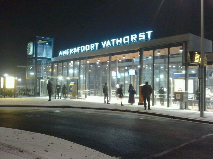Station Amersfoort Vathorst in Hooglanderveen