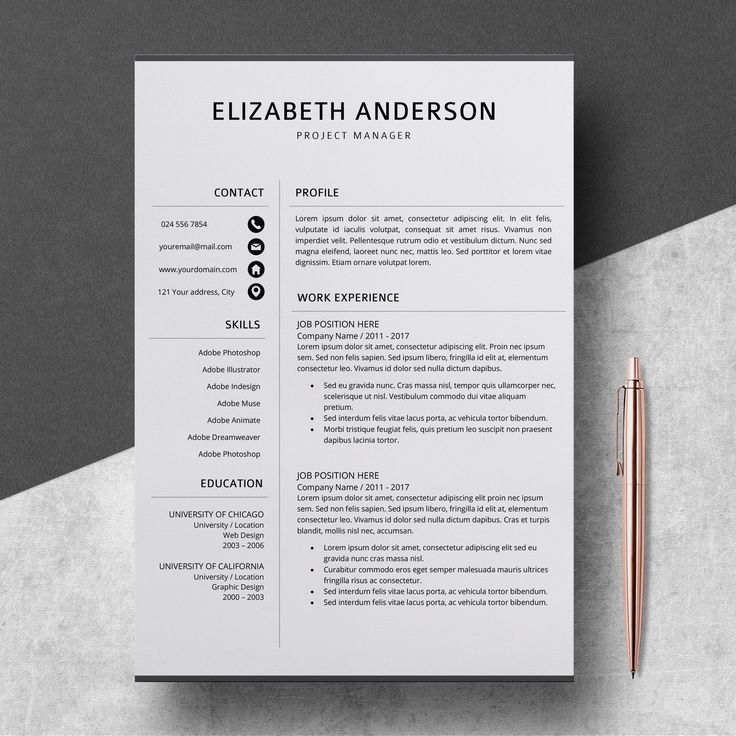 Professional Resume Template CV Template for MS