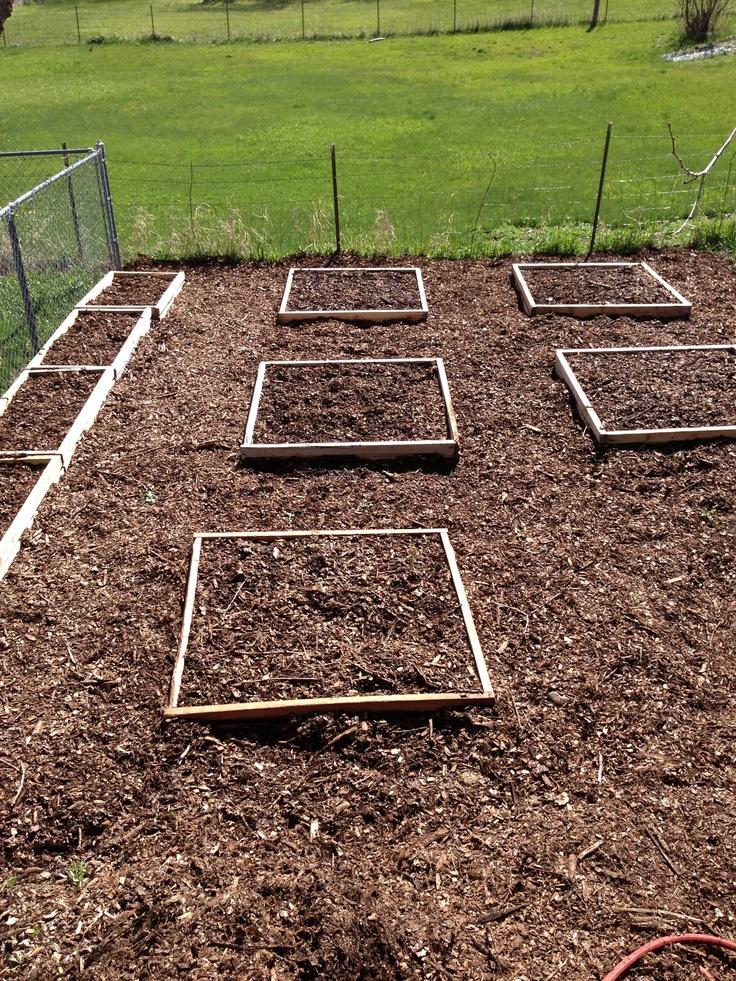 41 Best Gardening Back To Eden Method Images On Pinterest Organic Gardening Vegetables