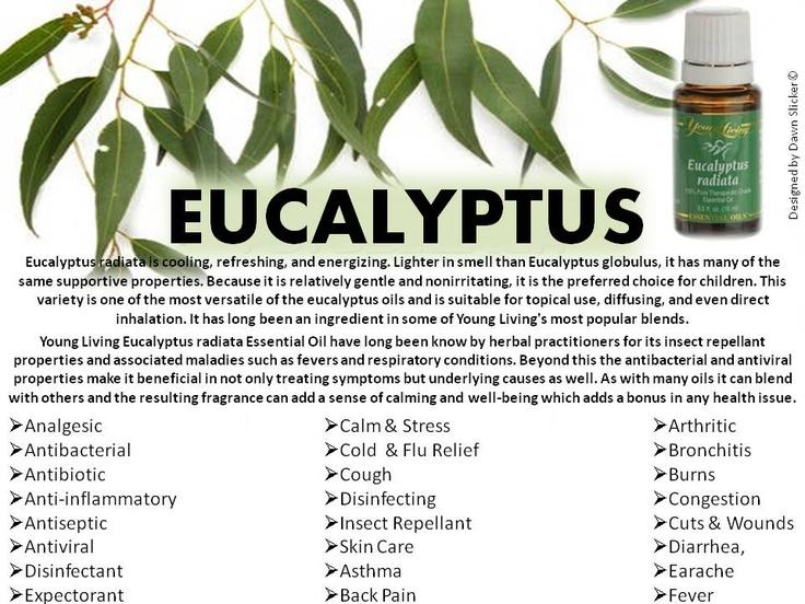 103 besten therische le bilder auf pinterest aromatherapie naturheilmittel und haushalte. Black Bedroom Furniture Sets. Home Design Ideas