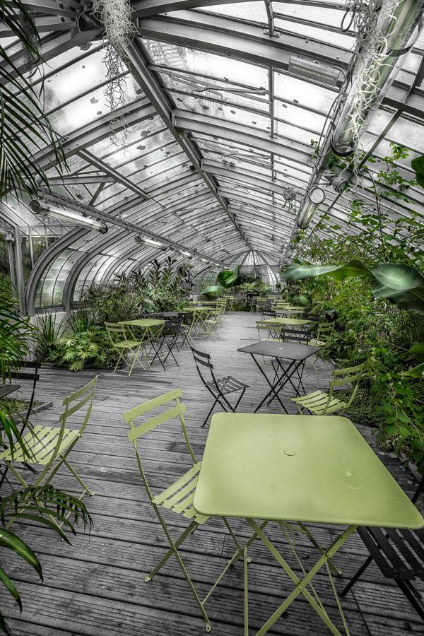 Serre du Jardin des Plantes à Nantes par Cédric Blondeel (http://cedric-blondeel.500px.com/nantes_couleurs). Nantes, Loire-Atlantique.