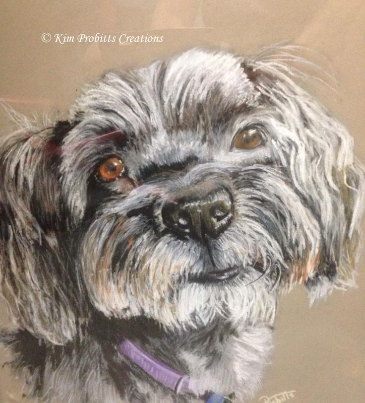Latest Pet Portrait by Kim Probitts Creations