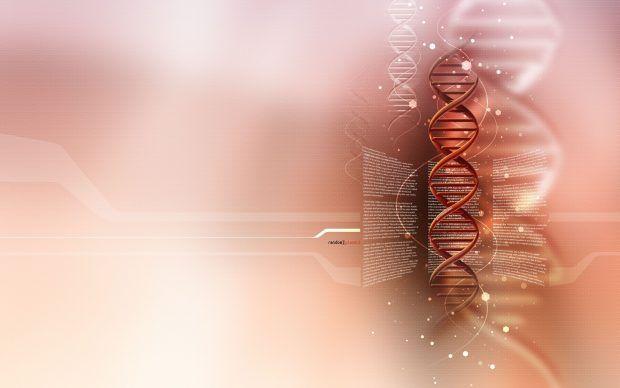 Hd Biology Wallpaper Pixelstalk Net Biologi