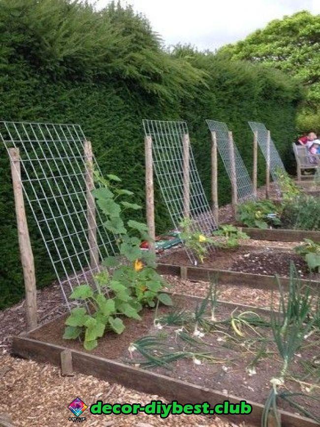 Garten In 2020 Garten Hochbeet Garten Garten Ideen