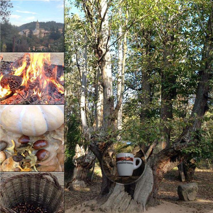 #Viladrau.Pequeño pueblo o hacer excursiones en sus bosques de brujas y bandoleros.