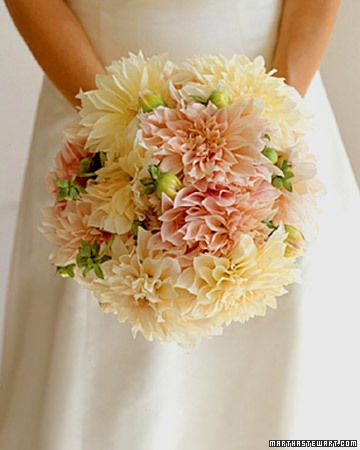 Dahlia Bouquet  Perfect for the late-summer bride, a bouquet of Cafe au Lait dahlias could easily be culled from your own garden.