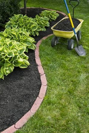 Landscaping on a Budget, A Better Lawn for Less