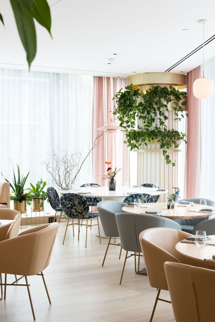 Vancouver's Botanist Restaurant Updates the Power Lunch - Dwell