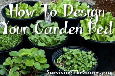 Lots of ideas and ways to design a garden - container, raised beds, hydroponics, and more!
