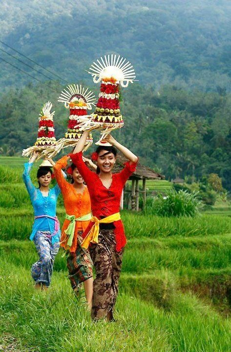 Bali I'd like to hear all about what you three are carrying on your heads!