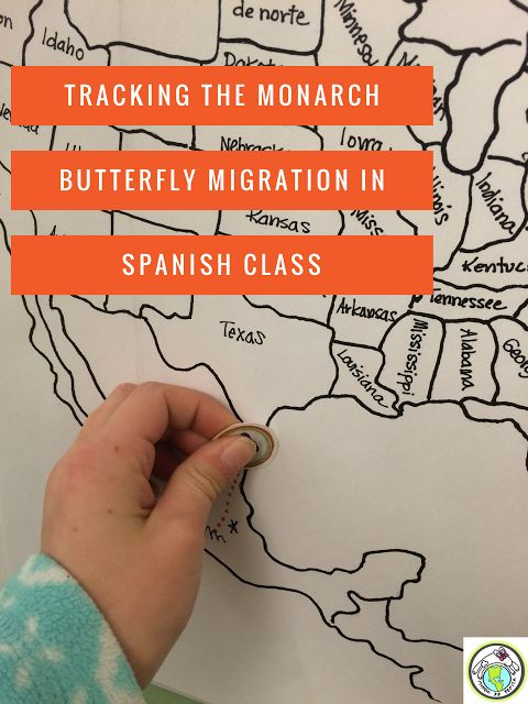 Tracking the monarch butterfly migration in Spanish class Here's how my 2nd Grade Spanish classes track the Monarch migration- a great way to incorporate culture & science in class! Mundo de Pepita, Resources for Teaching Spanish to Children