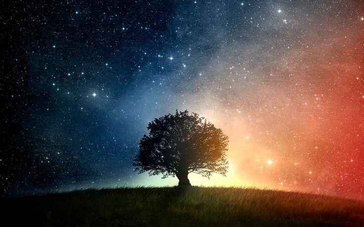 Tree Free Pc Wallpaper Downloads 4199  Amazing Wallpaperz