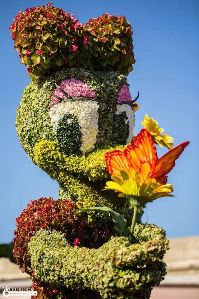 Disney's Epcot Topiaries Flowers at the 2014 Flower Garden Festival