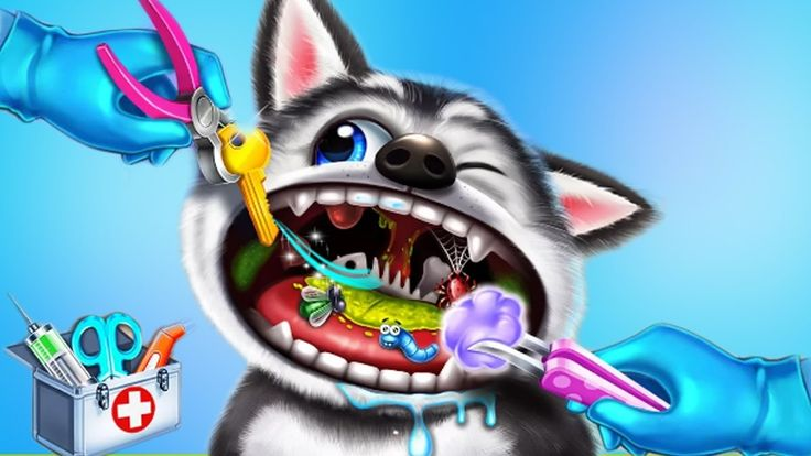 Pet Care Doctor Kids Game Little Pet Vet Doctor Care - Fun and Free Game...