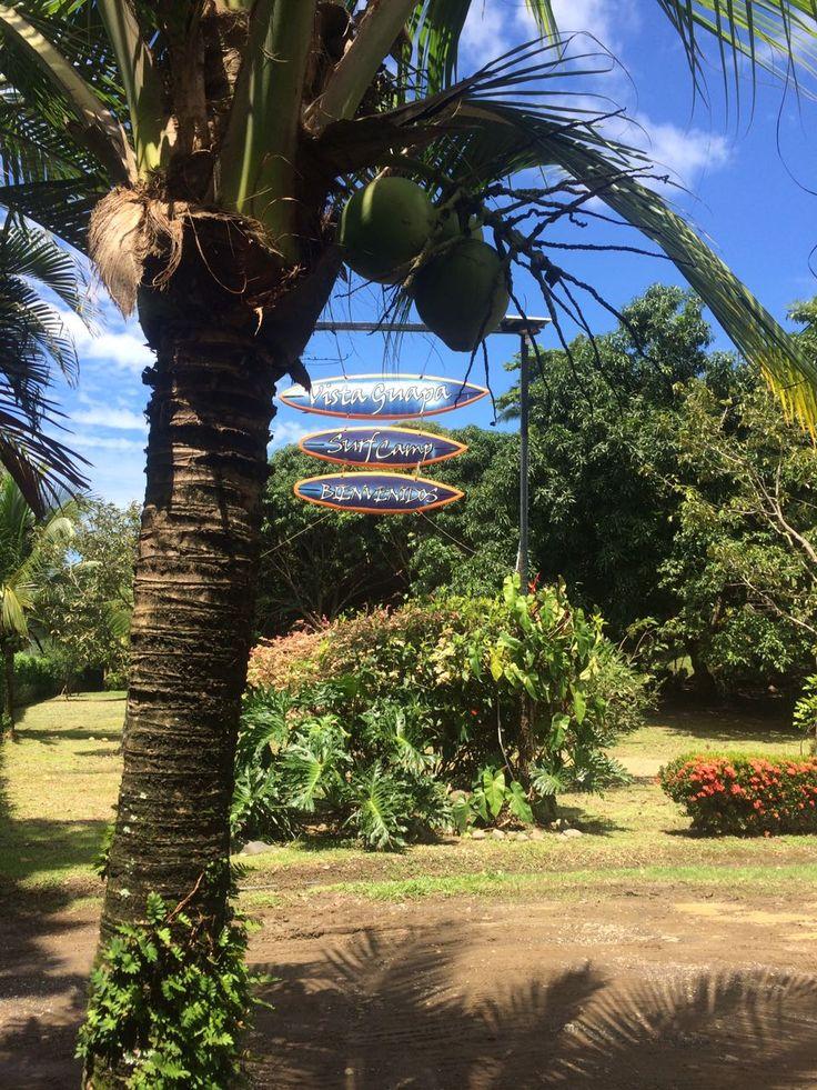 Welcome to Vista Guapa Surf Camp Costa Rica!