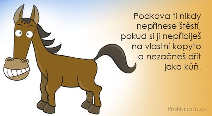 "55 To se mi líbí, 1 komentářů – ProNáladu.cz (@pronaladu.cz) na Instagramu: ""#pronaladu #nalada#citat#citaty #citace #motivace#motivation#inspiration #inspirace#moudro"""