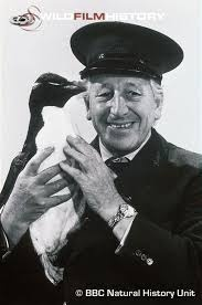 Animal Magic - johnny Morris, awww remember his lovely singsong voice