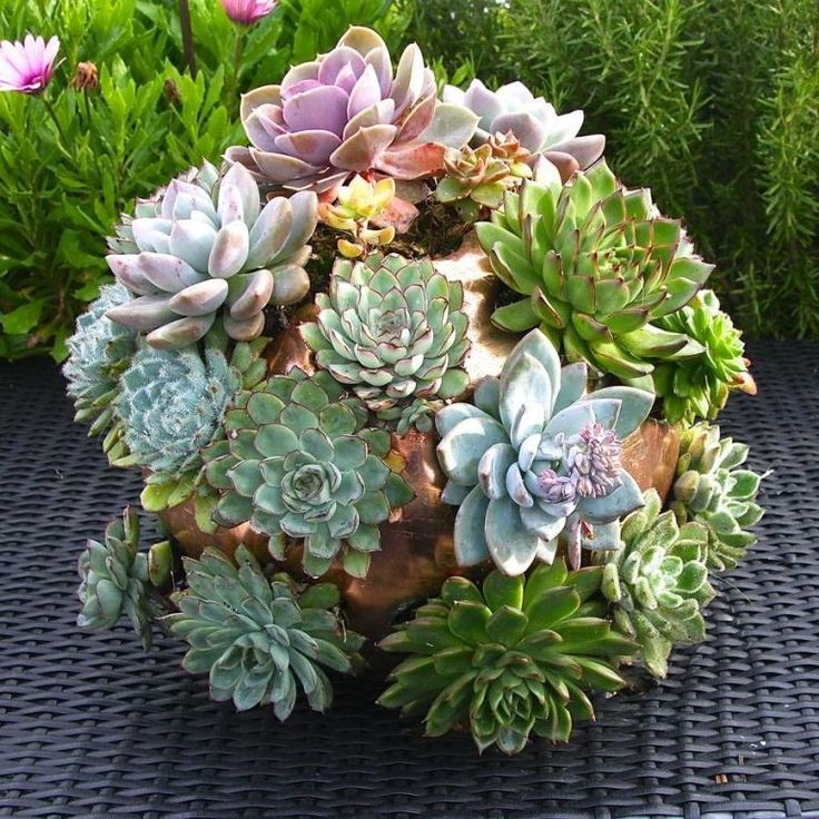 The quirkiest planters, pots and vases  - housebeautiful.co.uk