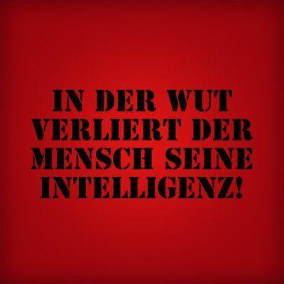 In der Wut verliert der Mensch seine Intelligenz!