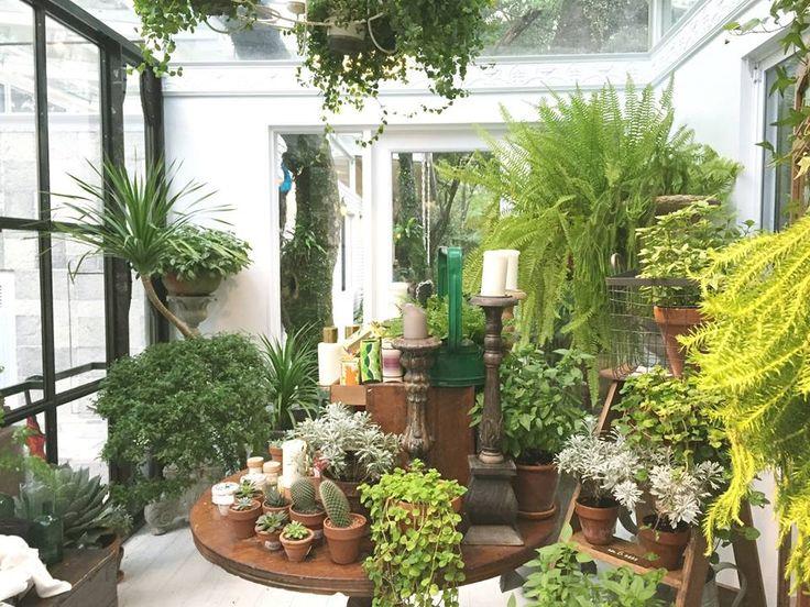 17 best images about atrium and indoor gardens on for Atrium garden window