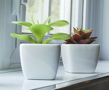 Artificial Potted Plants - Naturae Decor