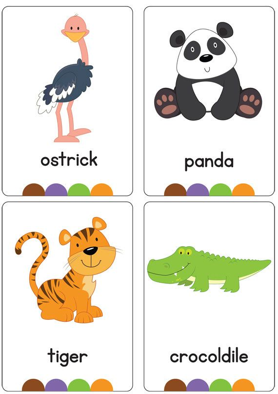 Zoo Flash Cards AUTOMATIC DOWNLOAD by BusyLittleBugsShop on Etsy