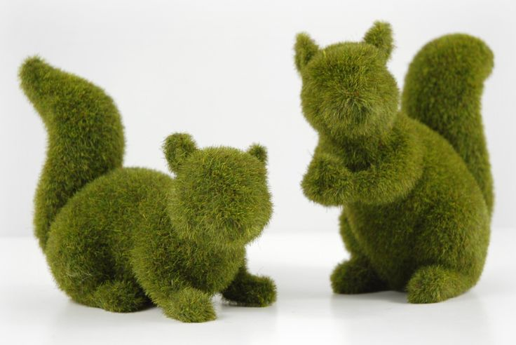 Because the only thing better than a fake squirrel... is a moss covered squirrel  [someone else's caption]