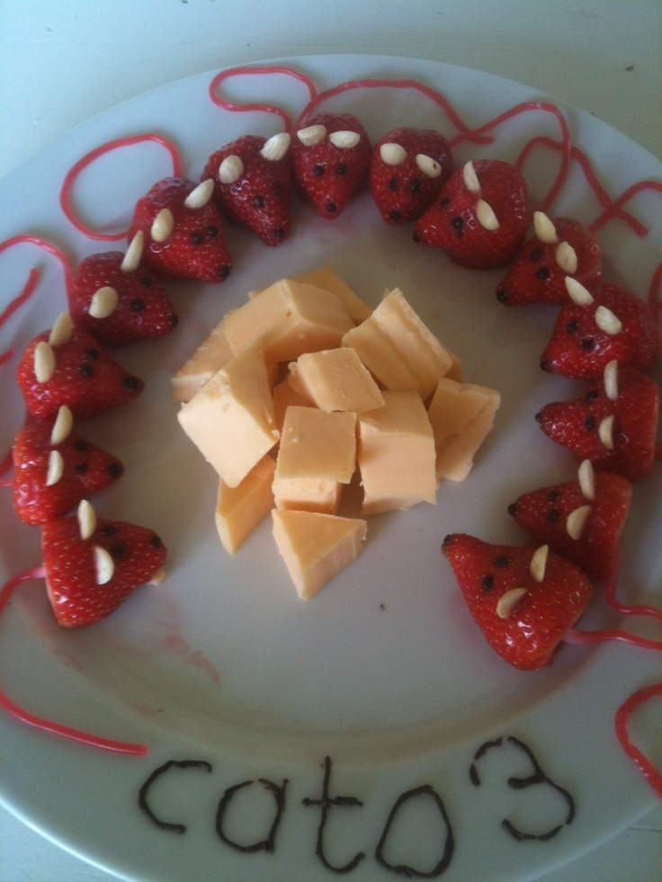 Muizen met kaas.Leuke presentatie voor een hartige en zoete traktatie voor kleine kinderen!