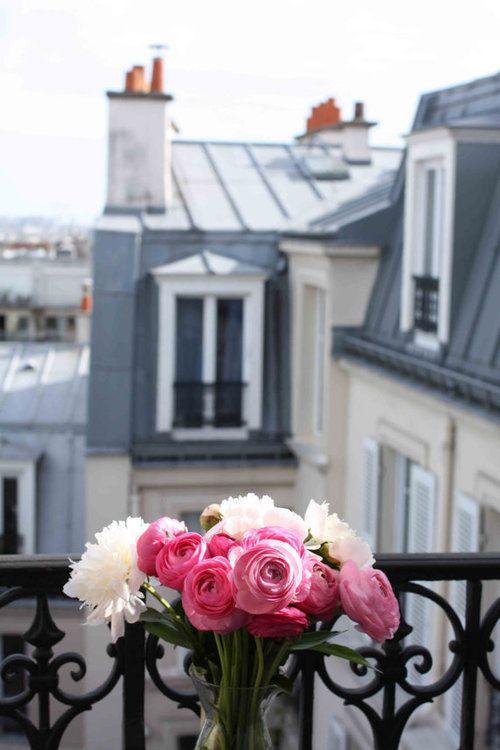 Paris Photography Paris Apartment Pink Ranunculus On The