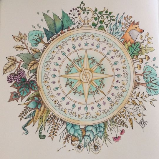 Enchanted Forest Coloring Book By Johanna Basford The Compass