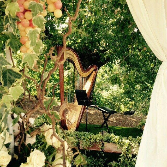Woodland harp#charismaitaly