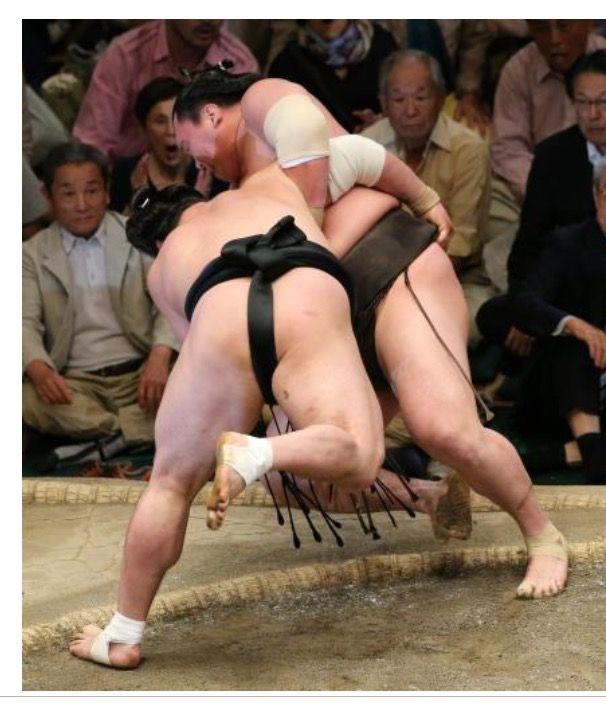 Female erotic sumo wrestling