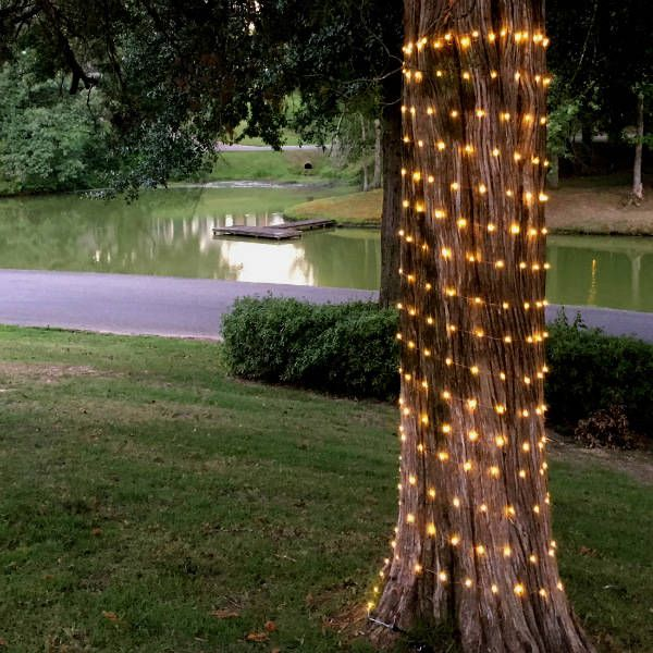 300 600 Or 900 Warm White Fairy Lights On 100 Ft 200 Ft Or 300 Ft Copper Or Silver Wire White Fairy Lights Warm White Fairy Lights Fairy Lights
