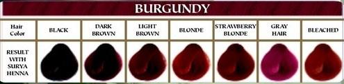 Burgundy Surya Henna Cream