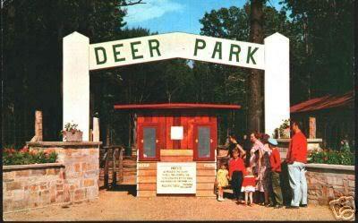 Deer Park Funland Muskegon Pinterest Parks Deer And