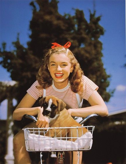 Norma Jean/Marilyn & her dog.