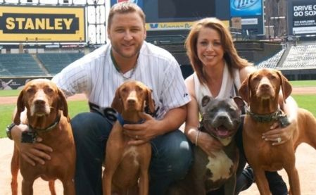 Ontario's pit bull ban forces Toronto Blue Jays pitcher Mark Buehle to live apart from his family because they refuse to abandon their dog. Click to read story.