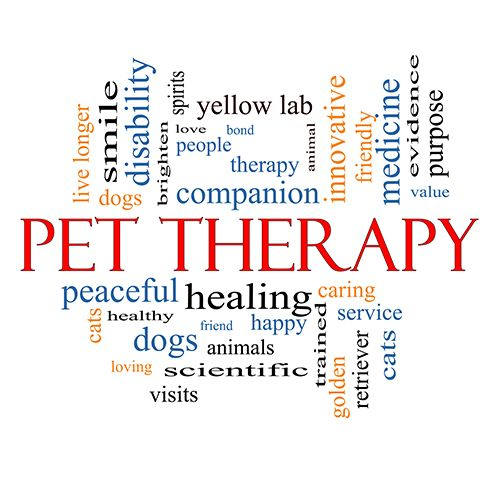 pet therapy Pet therapy at moffitt involves dogs of all shapes, sizes and personalities the dogs are certified and temperament tested to be sure they love people.