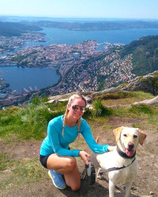 Ulriken hike dog labrador mountain Bergen Norway nature