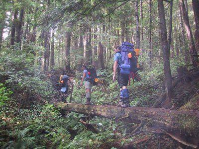 West Coast Trail Rainforest