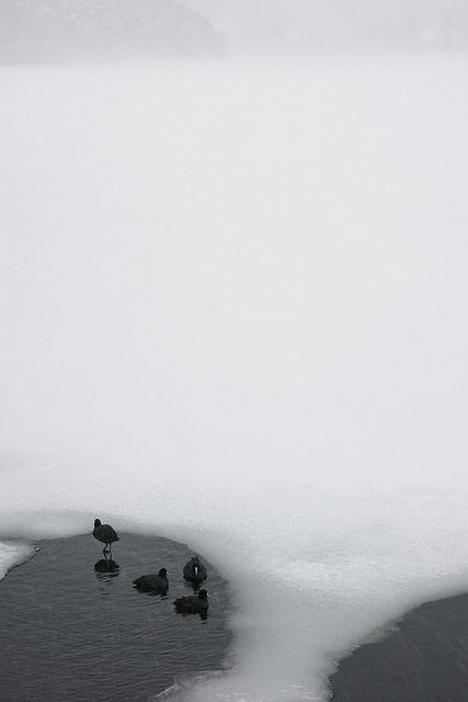 Lake Yunoko has almost flozen. Nikko City, Tochigi Pref, Japan. #photography #wanderlust