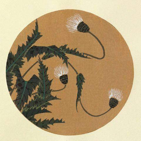 伊藤若冲『小薊(しろあざみ)』-「花卉図天井画」