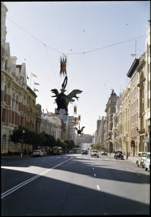 144602PD: Black swan Christmas decorations in St Georges Terrace, Perth, 8 December 1962 https://encore.slwa.wa.gov.au/iii/encore/record/C__Rb4557465