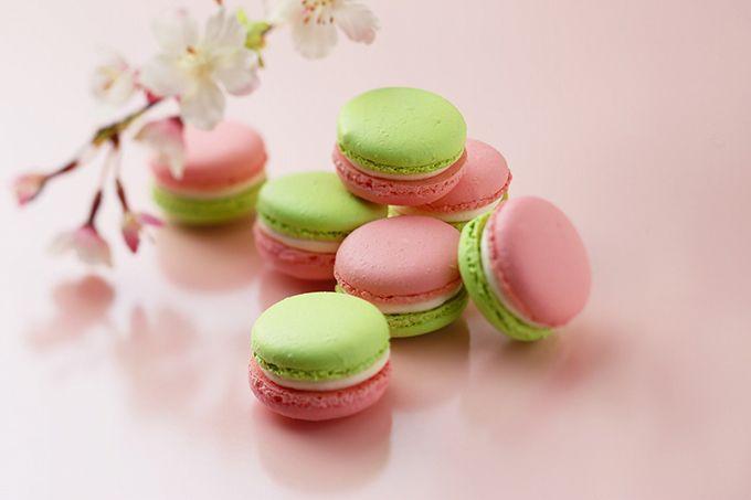 アンリ・シャルパンティエの限定「桜スイーツ」、花びら舞うショートケーキ&香るマカロン | ファッションプレス