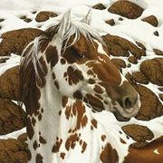 Hide and Seek...by Bev Doolittle