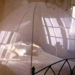 Man jailed for stealing mosquito nets